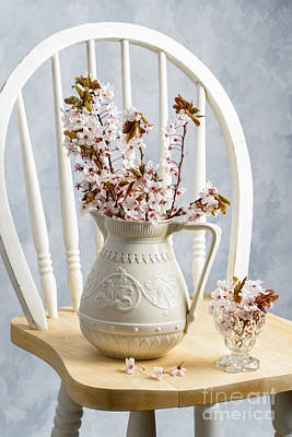 Antique Flowers Vase Wall Art - Photograph - Jug Of Spring Blossom by Amanda Elwell