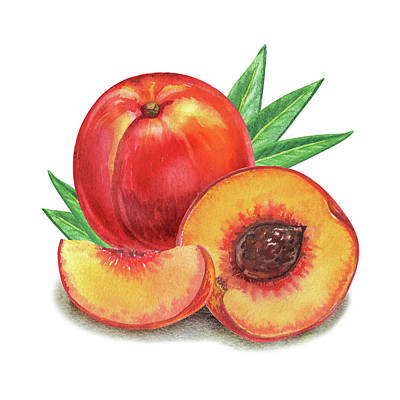 Painting - Juicy Peach by Irina Sztukowski