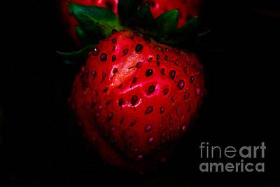 Photograph - Juicy Red by Kim Henderson