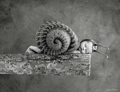 Photograph - Julia Snail by Anne Geddes