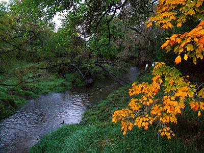 Indiana Landscapes Photograph - July Fall by Michael L Kimble