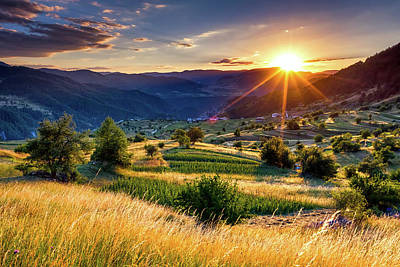 Rhodope Mountains Photograph - July Sun by Evgeni Dinev