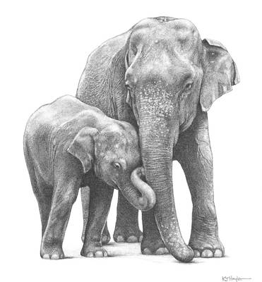 Jumbo Family Art Print by Kevin Hayler