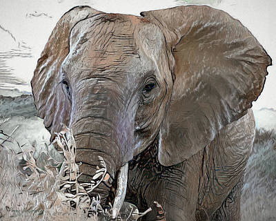 Digital Art - Jumbo by Pennie McCracken