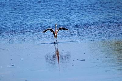 Photograph - Jump by Michiale Schneider