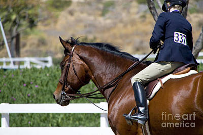 Photograph - Jumper Horse And Rider by Waterdancer
