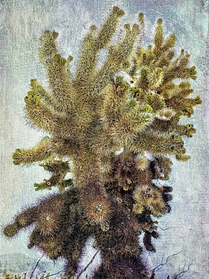 Digital Art - Jumping Cholla by Sandra Selle Rodriguez