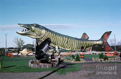 Muskie Photograph - Jumping Muskie Fish, National Fresh Water Fishing Hall Of Fame,  by Wernher Krutein
