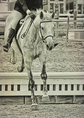Photograph - Jumping Vertical by JAMART Photography