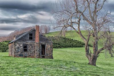 Photograph - Junaluska Road Christmas Tree Farm by Victor Culpepper