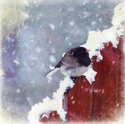 Art Print featuring the digital art Junco In The Snow, Square by Christina Lihani