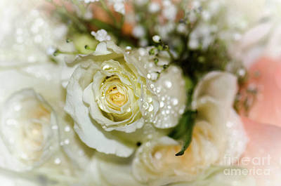 Photograph - June Bouquet by Amy Porter