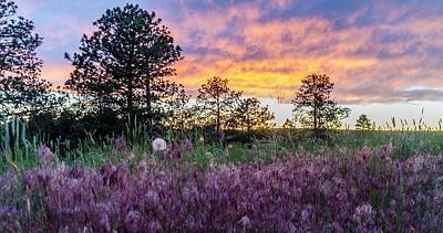 Photograph - June Color At The Rimrocks by Dutch Ducharme