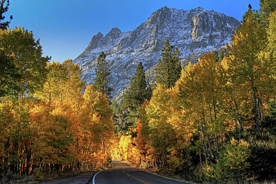 Photograph - June Lake Loop by Donna Kennedy
