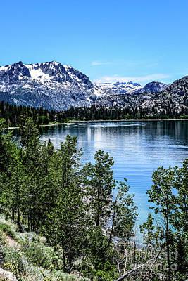 Photograph - June Lake Portrait by Joe Lach