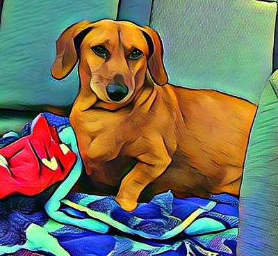 Dachshund Digital Art - Junebug In The Backseat by Robert Sowell