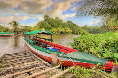 Photograph - Jungle Boat by Nadia Sanowar