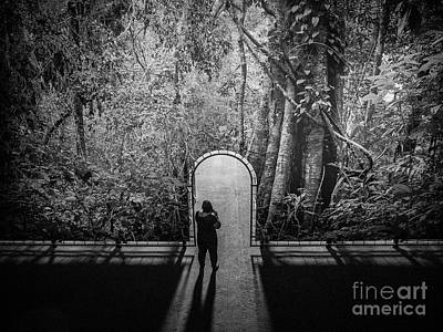 Photograph - Jungle Entrance by Hans Janssen