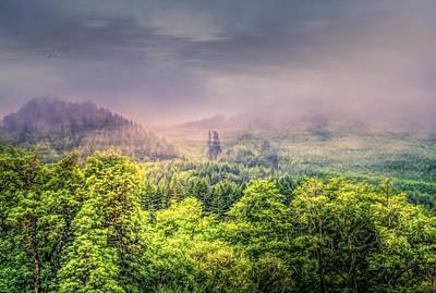 Photograph - Jungle Fog by Bill Posner