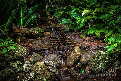 Photograph - Jungle Fountain Kauai Hawaii by Blake Webster