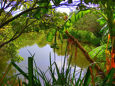 Photograph - Jungle Garden View by Sheri McLeroy