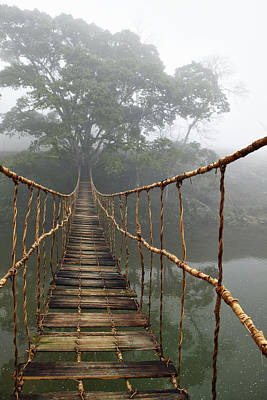Bridge Photograph - Jungle Journey 2 by Skip Nall