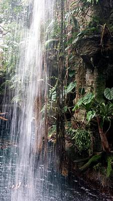 Photograph - Jungle Waterfall by Kenny Glover