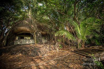 Photograph - Jungle Relics 1 by Daniel Knighton