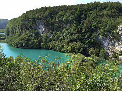 Photograph - Jungle River In Croatia by Doc Braham