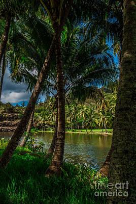 Jungle River Palms Kauai Art Print