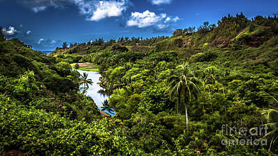 Photograph - Jungle River South Shore Kauai Hawaii by Blake Webster