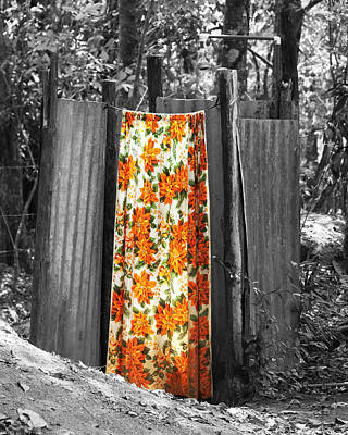 Jungle Shower Art Print by RC Photography