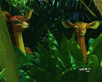 Photograph - Jungle Still Life by Mickey Wright