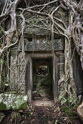 Tree Roots Photograph - Jungle Temple Door #1 by Stephen Stookey