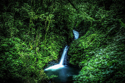 Art Print featuring the photograph Jungle Waterfall by Nicklas Gustafsson