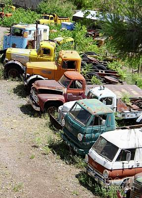 Photograph - Junkyard Rainbow by Suzanne Oesterling