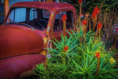 Photograph - Junkyard Truck by Garry Gay