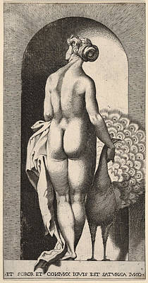 Drawing - Juno Standing In A Niche by Giovanni Jacopo Caraglio
