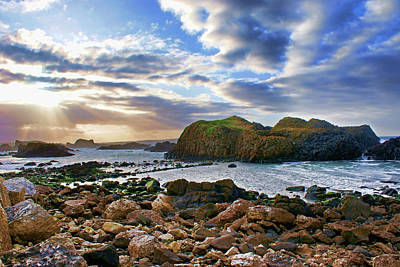 Photograph - Jurassic Coastline by Colin Clarke
