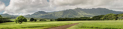 Photograph - Jurassic Kahili Ranch Panorama by Teresa Wilson