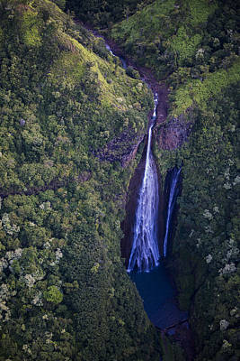 Photograph - Jurassic Park Falls by Robert Potts