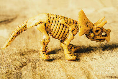 Object Wall Art - Photograph - Jurassic Toy Triceratops by Jorgo Photography - Wall Art Gallery