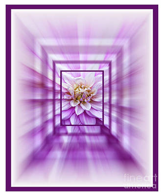 Digital Art - Just A Dahlia 4 by Wendy Wilton