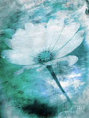 Just A Daisy Art Print by Clare Bevan