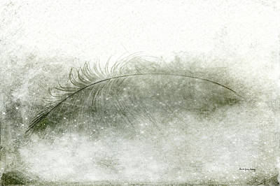 Clouds - Just a Feather by Randi Grace Nilsberg