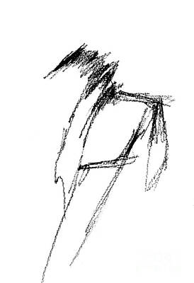 Drawing - Just A Horse Sketch by Frances Marino