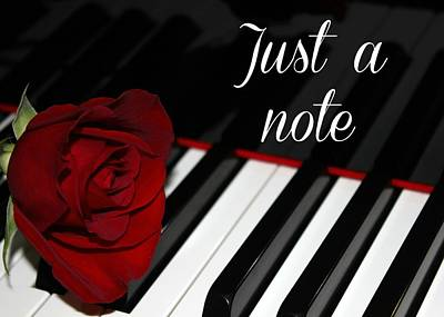 Photograph - Just A Note - Red Rose by Classically Printed