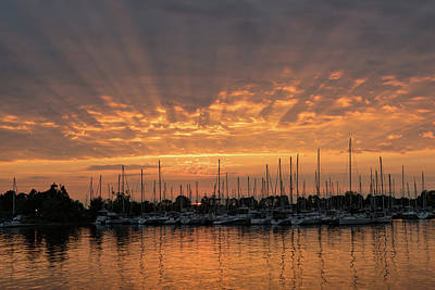 Photograph - Just A Sliver Of The Sun - Sunrise God Rays At The Marina by Georgia Mizuleva