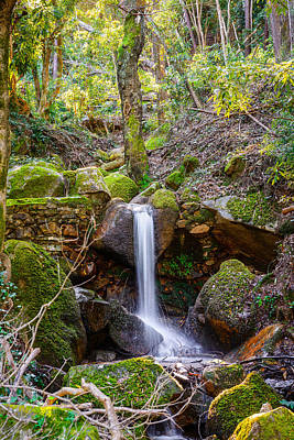 Waterfalls And Trees Landscape Photograph - Just A Very Small Waterfall I by Marco Oliveira