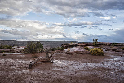 Just After The Rain Art Print by Jon Glaser